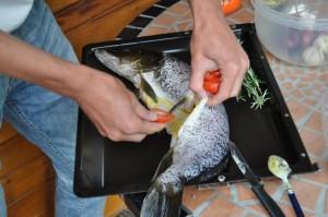 Kochevent Hecht 2