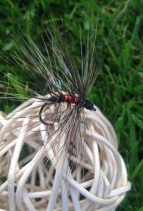 Fliege 5